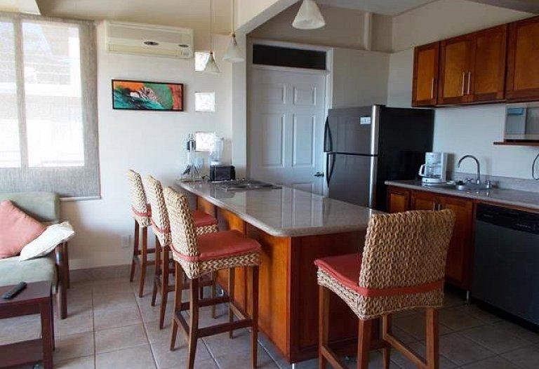 Condominium Tucanes #11 Playas del Coco Ocean view